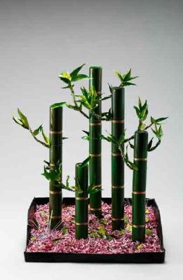 신(新)십장생-대나무 숲